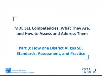 Webinar 3-23-20 SEL Competencies - TBAISD